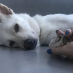 Hold my hand while I sleep